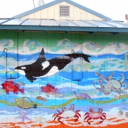 Port Orford Sea Life Mural